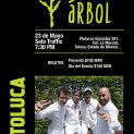Árbol en Toluca