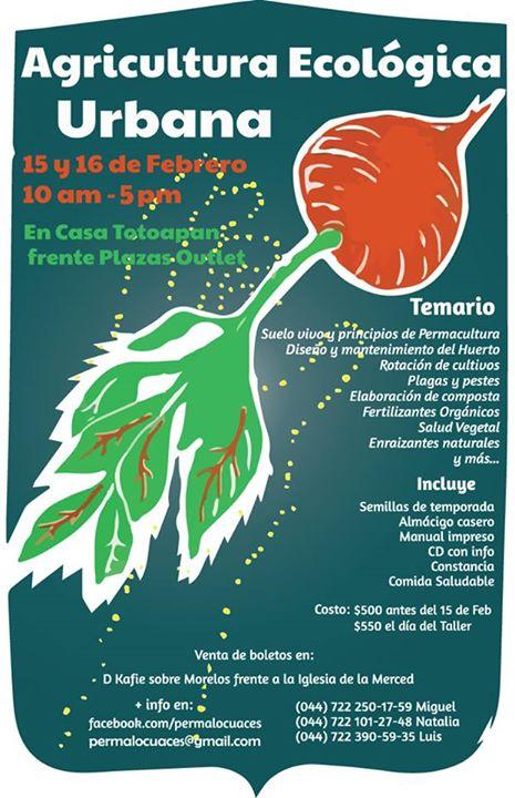 Taller de agricultura ecol gica urbana toluca cultural for Rotacion cultivos agricultura ecologica