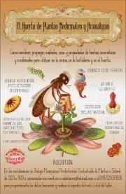 Taller hierbas arom ticas y medicinales toluca cultural for Hierbas aromaticas y medicinales