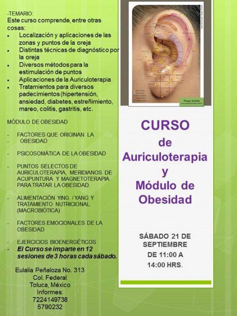 Curso De Auriculoterapia Y Modulo De Obesidad Toluca Cultural