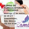 Curso de Auriculoterapia y Obesidad