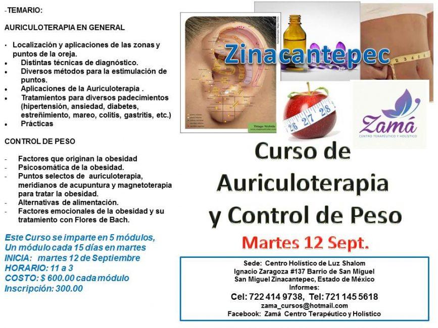 Curso De Auriculoterapia Y Obesidad En Zinacantepec 23