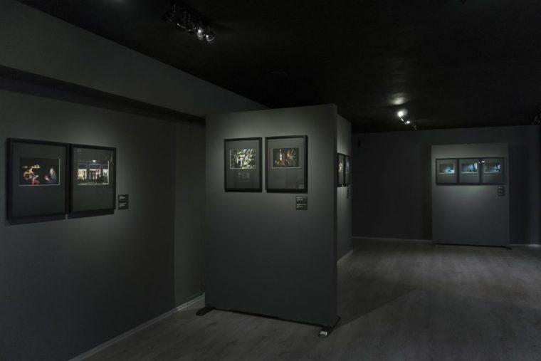 Exposición INERTE
