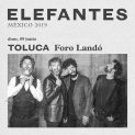 Elefantes en Toluca