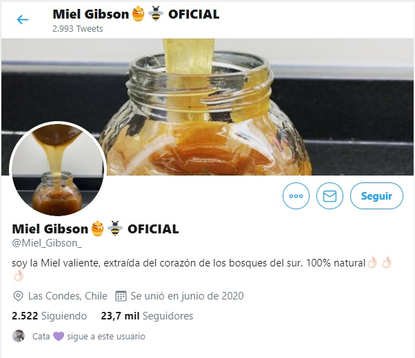 Miel Gibson - twitter