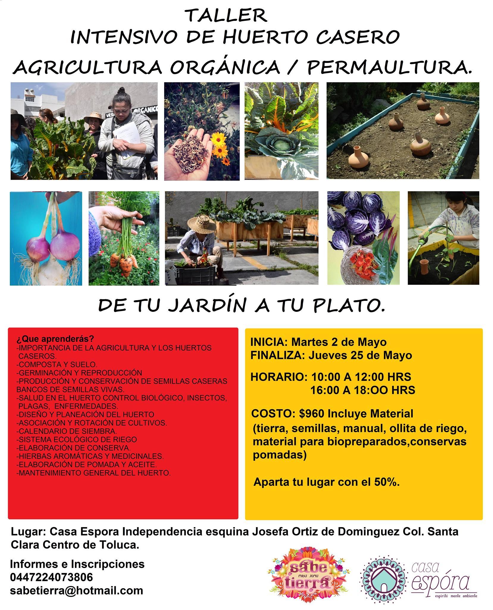 taller intensivo huerto casero agricultura orgnica permacultur toluca cultural